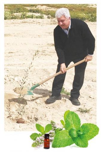 MANGHEBATI, producteur d'extrait de plantes